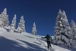 Wintermärchen am Schnippenkopf / Allgäuer Voralpen